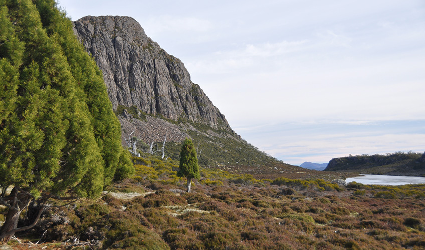 Walls of Jerusalem, Tasmania